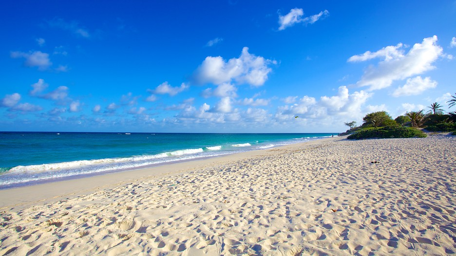 6 Beaches In Barbados That Will Make You Go Wow